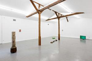 Ausstellung von Tue Greenfort